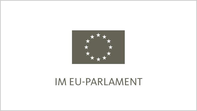Im EU Parlament